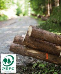 PEFC zertifiziertes Holz als Holzpolder im Wald